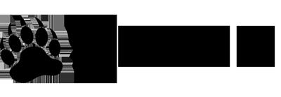 blackbear-logo-front